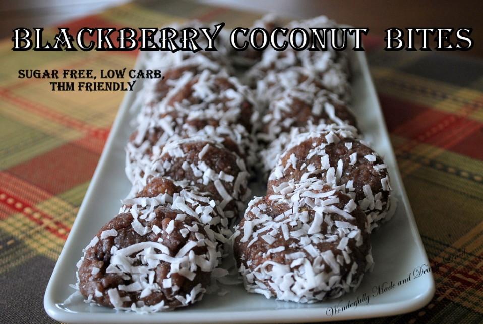 Blackberry Coconut Bites