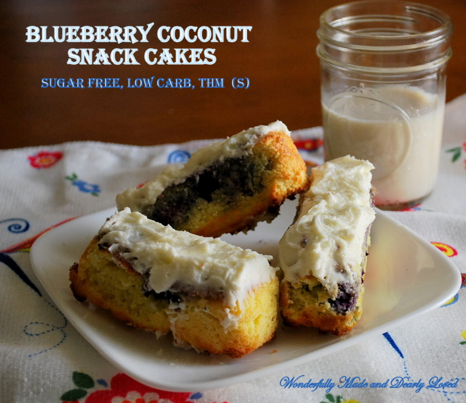 Blueberry Coconut Snack Cakes