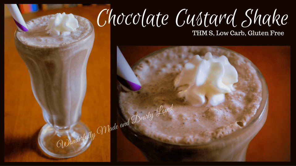 Chocolate Custard Shake (THM S, Low Carb)