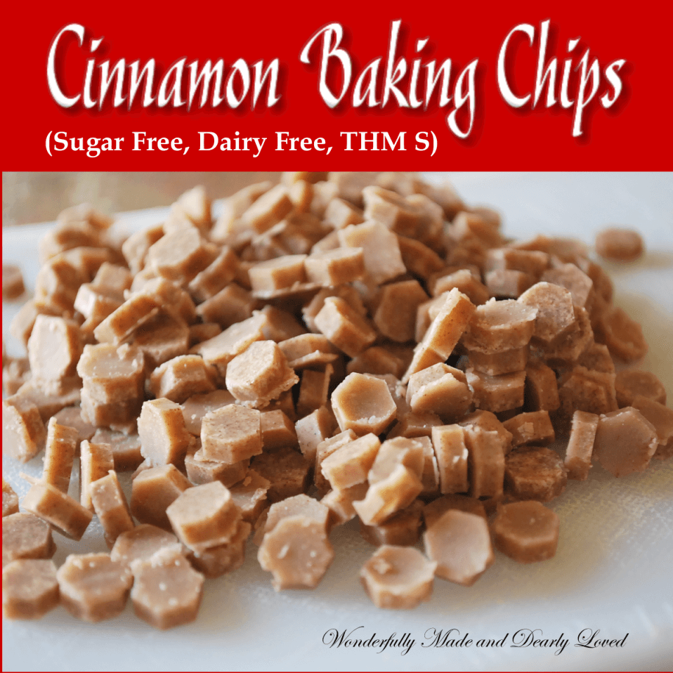 Cinnamon Baking Chips (Sugar Free, Dairy Free, Low Caarb, THM S)