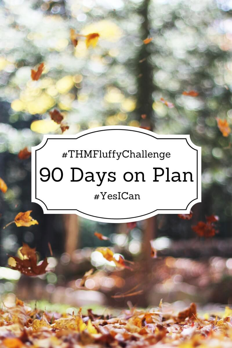 90 Day THM Plan Challenge the the #THMFluffyChallenge Goroup